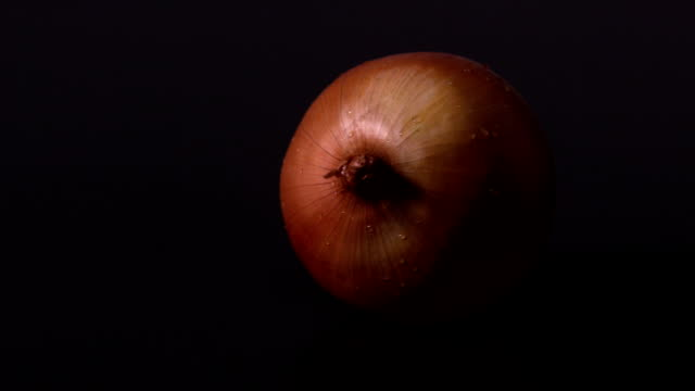 Onion spinning against black background video
