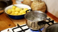 Onions Flies into a Pot of Boiling Water in the Home Kitchen. Slow Motion video