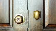 open wooden modern door with one hand video