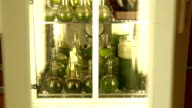 Opening of doors of a laboratory photo-incubator with green microalgae in glass containers video