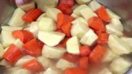Orange carrot video