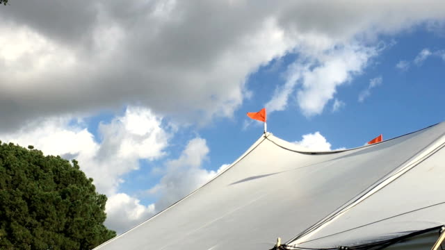 Orange Pennants, Blue Sky with Clouds video