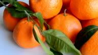 Oranges Bright Fruit video