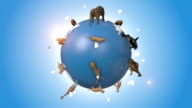 Orbiting Blue Earth Covered By Wild Animals video