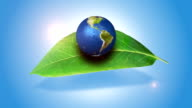 Orbiting Globe On A Green Leaf video