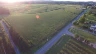Orchard farm aerial view video