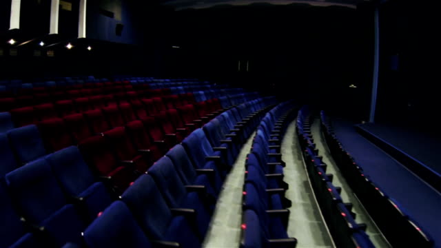 Ordinary and VIP armchairs in the cinema video