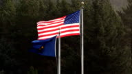 Oregon And United States Flags Flying In Strong Wind video