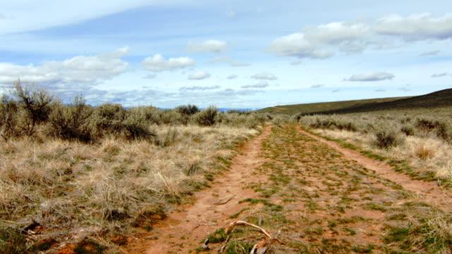 Oregon Trail Covered Wagon Ruts video