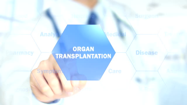 Organ Transplantation , Doctor working on holographic interface, Motion Graphics video