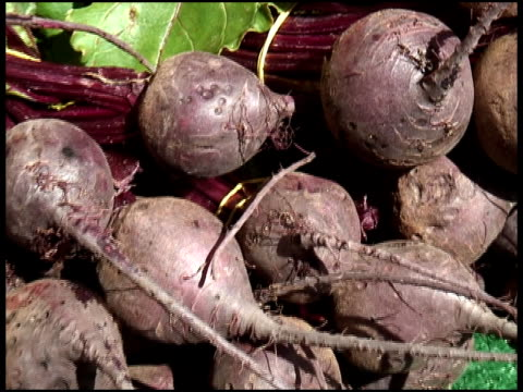 Organic Beets, Beetroot, Swiss Chard video