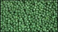 (HD1080i) Organic Loose Peas video