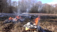 Organic rubbish in cardboard boxes burning in the field video