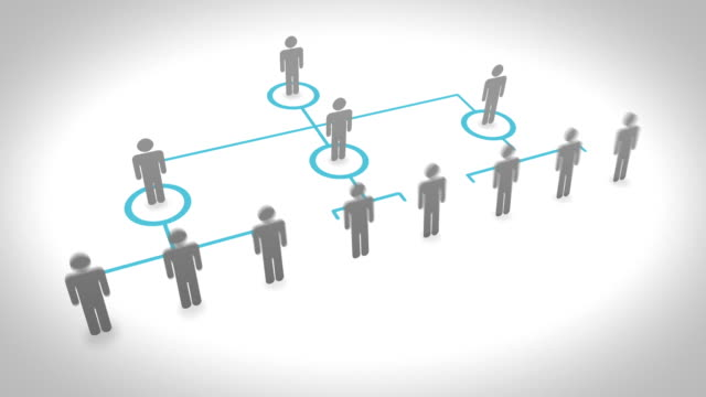 Organization Chart video