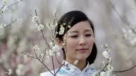 Oriental beauty video