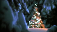 HD: Ornamented Christmas Tree video