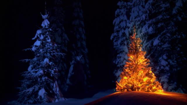 HD LOOP: Ornamented Christmas Tree video
