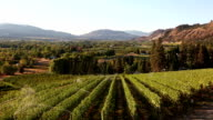 Osoyoos Vineyard Winery Okanagan Valley video