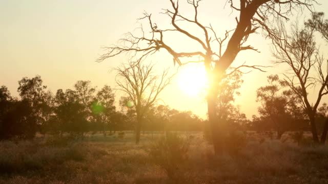 Outback Australian Sunset video