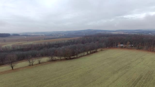 Overcast aerial fields with tree line video
