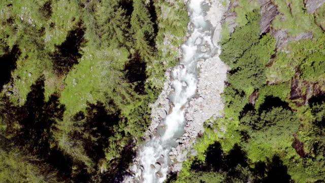 overhead aerial flight over italian alps mountain river creek stream and bridge between pine woods. Wild green nature outdoor. above top view 4k drone backward video