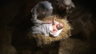 Overhead shot of baby Jesus with Mary and Joseph video