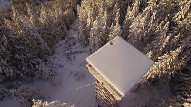 Overhead Winter Drone Shot of Heybrook Mountain Lookout Revealing View video