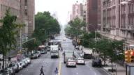 HD. Overlook down a City Street. People & traffic. video