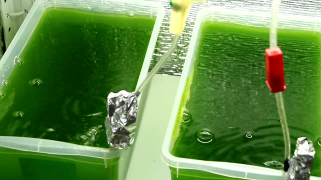 Overview of vessels with green bubbling liquid video