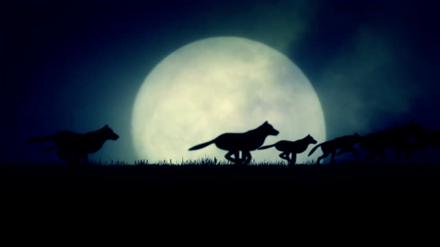A Pack of Wolves Running on a Rising Full Moon Background video