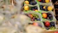 Packages with fresh ripe fruit in box in forest outdoors for holiday video