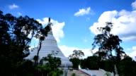 Pagoda video