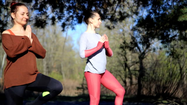 Pair of women exercising yoga fitness sports in forest park video