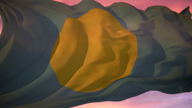 Palau Flag video