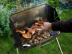 PAL:Barbecue video