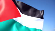 Palestinian Flag video
