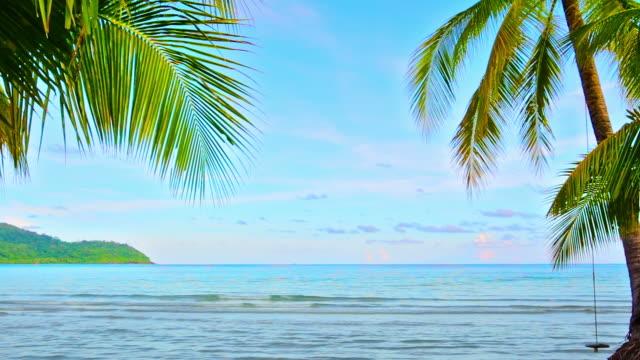Palm gate to sea video