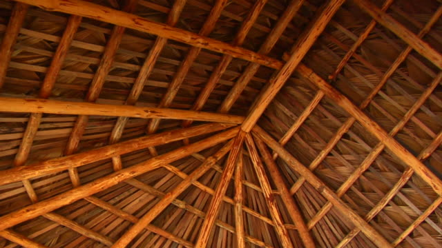 palm roof thatching video