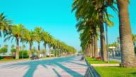 Palm trees avenue in Salou, Costa Daurada, Catalonia, Spain video