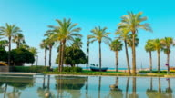 Palm trees, beach and clear blue sky, Salou in Spain video
