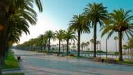 Palm trees promenade in Salou, Spain, Europe video