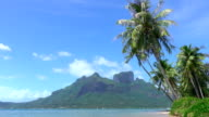 4K SLOW MOTION: Palm trees swaying in the wind on famous Bora Bora island resort on a beautiful sunny day in hot summer video