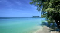 Palms on a tropical beach, waves, sand, island video
