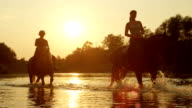 CLOSE UP: Palomino and dark brown horse with riders in river at magical sunset video