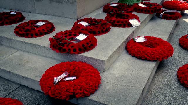 Pan Across Poppy Wreaths At War Memorial video