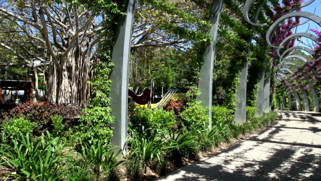 Pan from promenade in South Bank Parklands in brisbane video