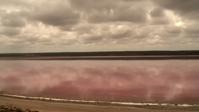 Pan from the Pink lake, Western Australia video