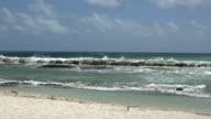 Pan of Ocean Barricade Beach Protection video
