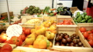 Pan to many varieties of tomatoes for sale on market stall. video
