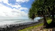 Pandanus Beach video